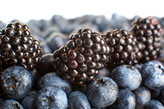 Freshly picked blueberries and blackberries close-up Royalty Free Stock Photos