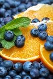 Freshly picked blueberries with orange Royalty Free Stock Photos
