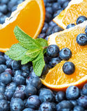 Freshly picked blueberries with orange Stock Photography