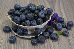 Freshly picked blueberries in a porcelain dish -  Juicy and fresh blueberries - Blueberry antioxidant. Stock Image