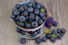 Freshly picked blueberries in a porcelain dish -  Juicy and fresh blueberries - Blueberry antioxidant. Royalty Free Stock Photos