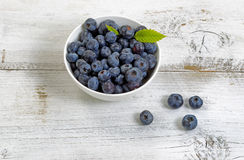 Freshly picked blueberries on rustic white wooden boards Royalty Free Stock Images