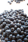 Freshly picked blueberries Royalty Free Stock Photography