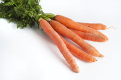 Freshly picked carrots. On withe background Royalty Free Stock Photography