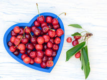 Freshly picked cherries on a blue heart shaped tray. Freshly picked cherries on a blue heart-shaped tray, set on a white wooden board, plus a branch of cherry Stock Images