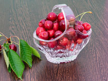 Freshly picked cherries in a crystal basket. On a dark wooden board, and a branch of cherry tree with leaves and cherries still on Royalty Free Stock Image
