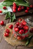 Freshly picked cherries Royalty Free Stock Photo