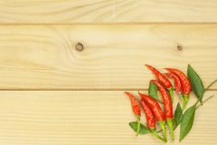 Freshly picked chili peppers on a wooden table. Preparation for the domestic processing of a crop. Royalty Free Stock Images