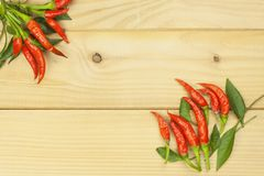 Freshly picked chili peppers on a wooden table. Preparation for the domestic processing of a crop. Royalty Free Stock Photography