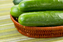 Freshly picked Cucumbers Royalty Free Stock Image