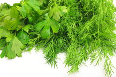 Freshly picked dill and parsley. Lie on white background freshly picked dill and parsley Royalty Free Stock Photos