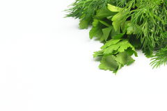 Freshly picked dill and parsley. Lie on white background freshly picked dill and parsley Stock Photo