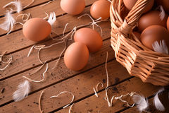 Freshly picked eggs in basket on wood table elevated view Royalty Free Stock Photography