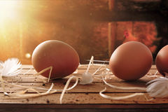 Freshly picked eggs on table with chicken within henhouse backgr Royalty Free Stock Photo