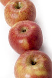 Freshly picked gala apples Stock Images