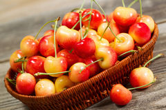Freshly Picked Golden Rainier Cherries in Basket on Rustic Wood Royalty Free Stock Photo