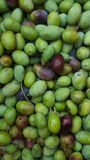 Freshly picked green olives overhead Stock Photography