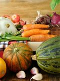 Freshly picked harvest of different autumn vegetables and fruit Royalty Free Stock Photos
