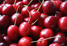 Freshly picked heap of cherries Stock Photography