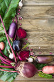 Freshly Picked Homegrown Vegetables Royalty Free Stock Images