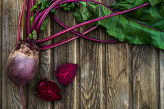 Freshly Picked Homegrown Vegetables Royalty Free Stock Image
