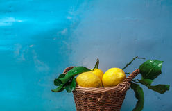 Freshly picked lemons. Mediterranean still life with lemons from Sorrento stock photo