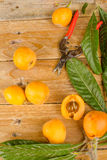 Freshly picked loquats still life Stock Images