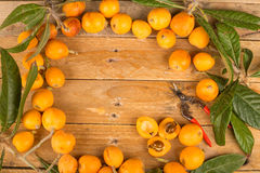 Freshly picked loquats Stock Photography
