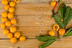 Freshly picked loquats Stock Images