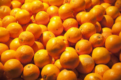 Freshly picked orange  fruits on market stall Royalty Free Stock Images