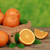 Freshly picked oranges in a wooden box Royalty Free Stock Photography