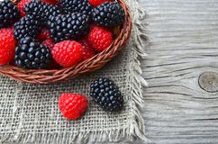 Freshly picked organic blackberries and raspberries in a basket on old wooden table. Healthy eating,vegan food or diet concept.Selective focus Royalty Free Stock Photography