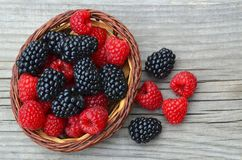 Freshly picked organic blackberries and raspberries in a basket on old wooden table. Healthy eating,vegan food or diet concept.Selective focus Stock Photos