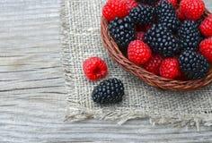 Freshly picked organic blackberries and raspberries in a basket on old wooden table. Healthy eating,vegan food or diet concept.Selective focus Royalty Free Stock Image