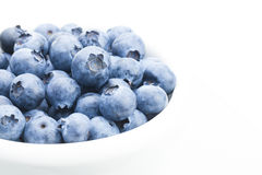 Freshly picked organic blueberries in white bowl - close up studio shot with focus on berries Royalty Free Stock Photography
