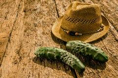 Freshly picked organic cucumbers Royalty Free Stock Photo