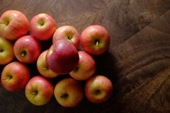 Freshly picked organic gala apples Stock Photo