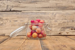 Freshly picked plum Royalty Free Stock Image