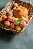 Plums Mirabelles red yellow green apples orange pumpkin in wicker basket on black grey stone background. Thanksgiving autumn Stock Photography