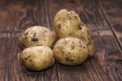 Freshly picked potatoes. Royalty Free Stock Photo