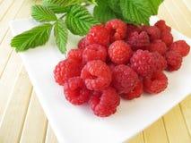 Freshly picked raspberries Stock Photos