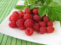 Freshly picked raspberries Stock Photo