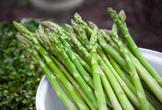 Freshly picked raw Asparagus and natural background stock photos