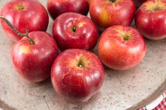 Freshly picked red apples on a plate Royalty Free Stock Photo
