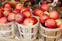 Freshly picked ripe red apples in baskets Royalty Free Stock Photos