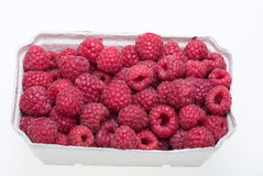 Freshly picked ripe red raspberries. Stock Photos