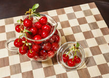 Freshly Picked Ripe Tart Cherries Royalty Free Stock Photography