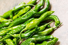 Freshly picked Sweet Green Peppers Stock Photos