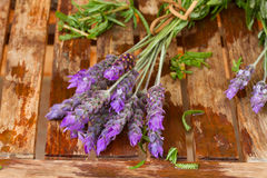 Freshly picked and washed lavender Stock Photography