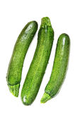 Freshly picked zucchini Royalty Free Stock Photo